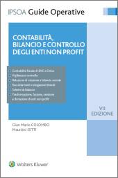 Contabilità, bilancio e controllo degli enti non profit