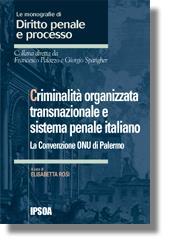 Criminalità organizzata transnazionale e sistema penale italiano