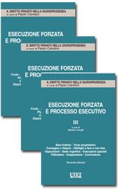 Esecuzione forzata e processo esecutivo - Vol. 1