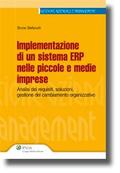 Implementazione di un sistema ERP nelle piccole e medie imprese