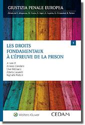 Les droits fondamentaux à l'épreuve de la prison