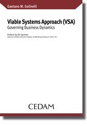 Viable Systems Approach (VSA)